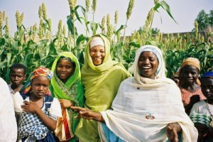 USAID in Nigeria